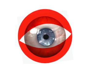 Zakladatelka platformy Fresh Eye shrnuje ve zprávě pro odborný časopis Mediální studia průběh mezioborové konference Na viděnou 2.